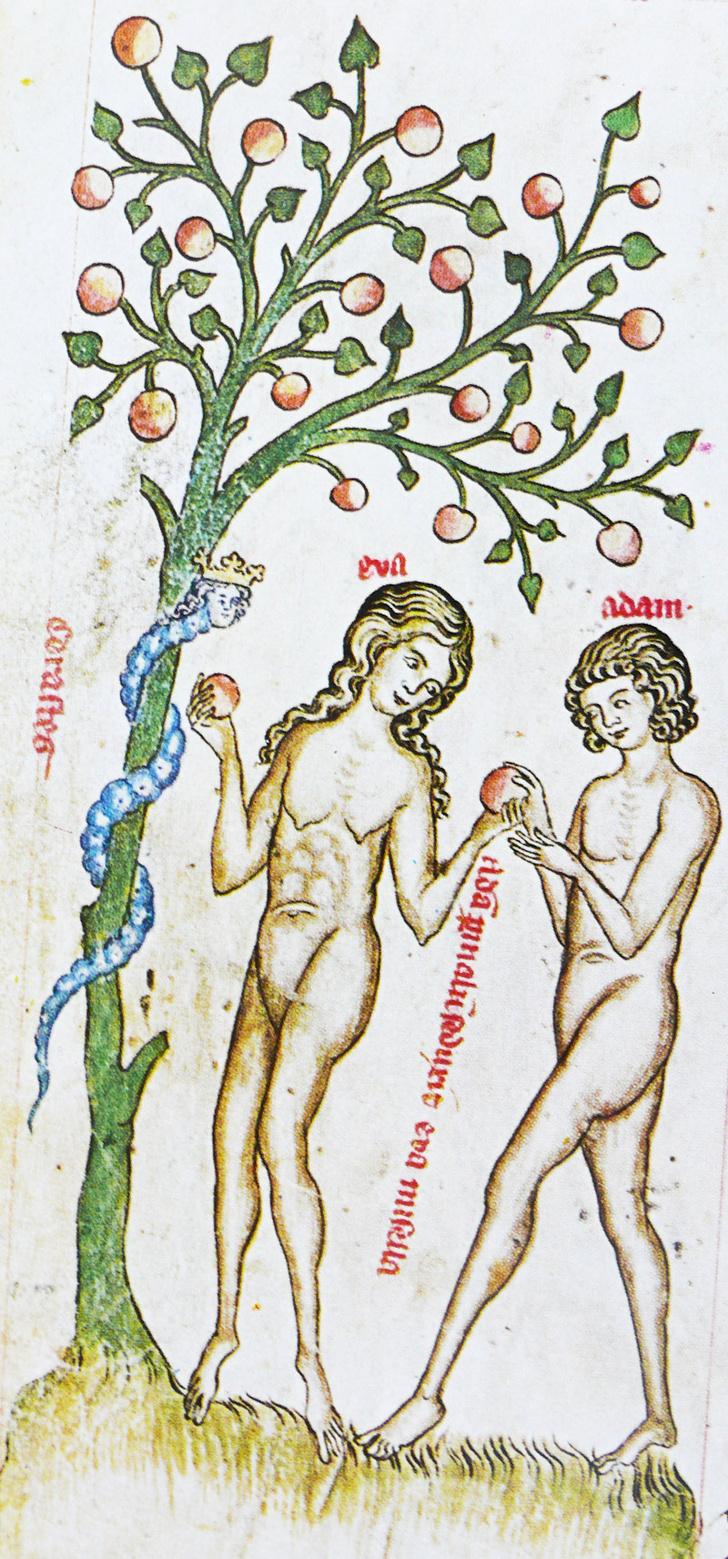 Фото №8 - Галерея: как изображали Адама и Еву последние  2000 лет