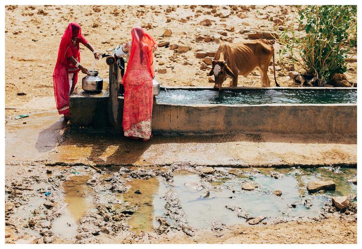 Фото №10 - Личный опыт: как уехать в Индию, чтобы помогать больным и бездомным