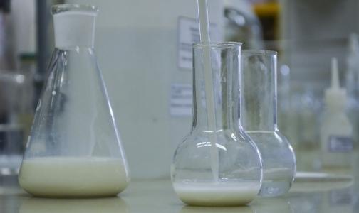 Фото №1 - В Петербурге проверили молоко. Почти половина образцов оказалась фальшивкой