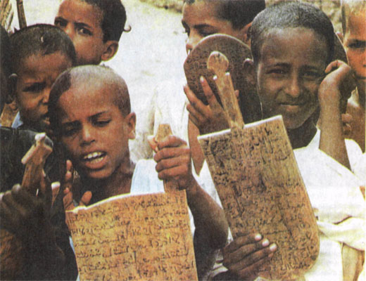 Фото №1 - Город у края Сахары