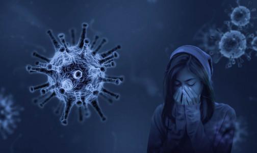 Фото №1 - Ученые США: Тяжелые симптомы ковида - не от проблем с легкими, а от головы