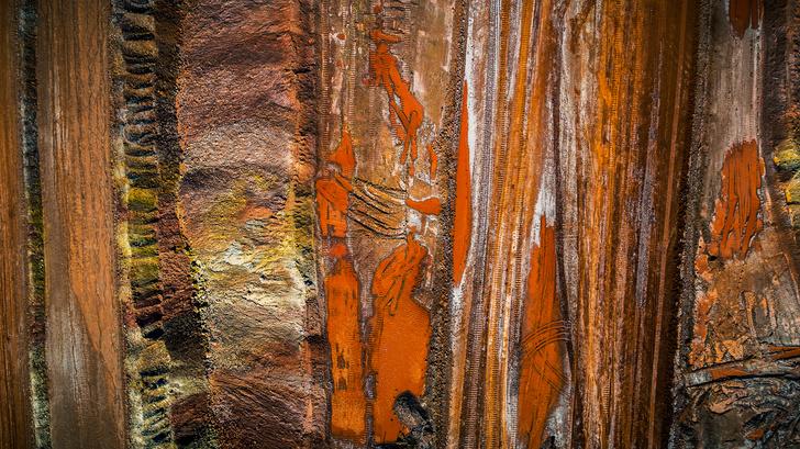 Фото №1 - Геологи «нащупали» пульс Земли