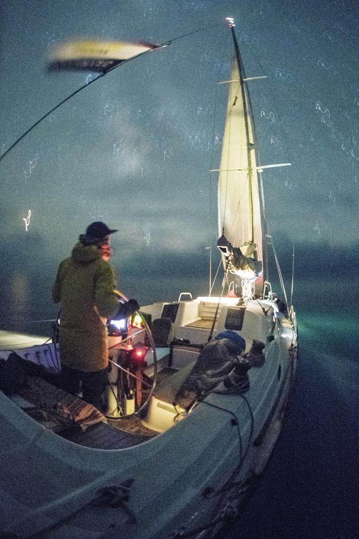 Фото №1 - Проект: китовый инстаграм