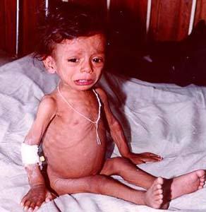 Фото №1 - Детей умерло на 25% меньше