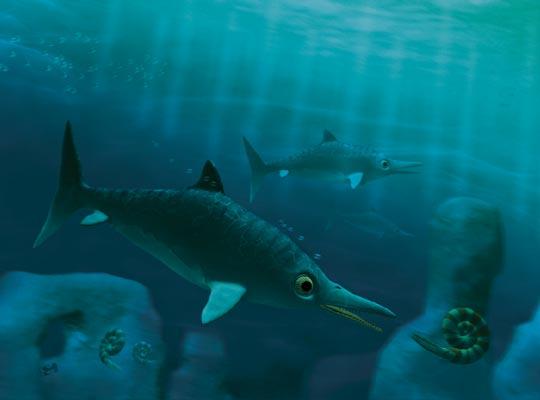 Фото №1 - Владыки морей юрского периода