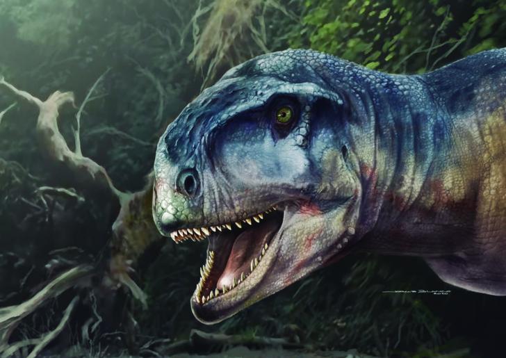Фото №1 - Обнаружен «двойник» тираннозавра