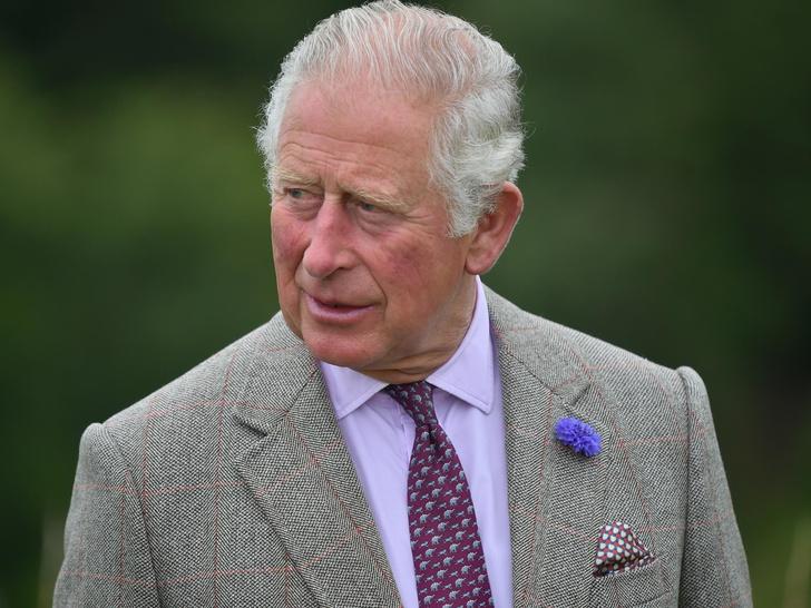 Фото №1 - Джордж, Шарлотта, Луи или Арчи: кто любимый внук принца Чарльза