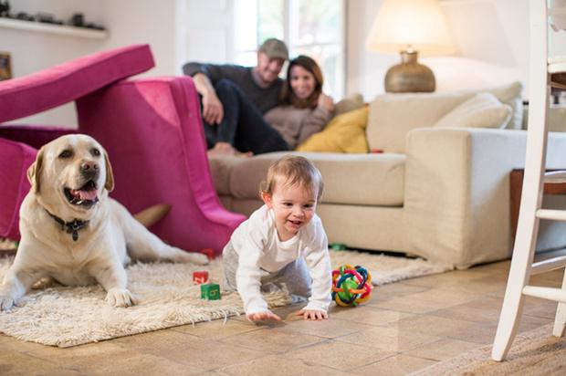 Фото №1 - Предметы, окружающие ребенка