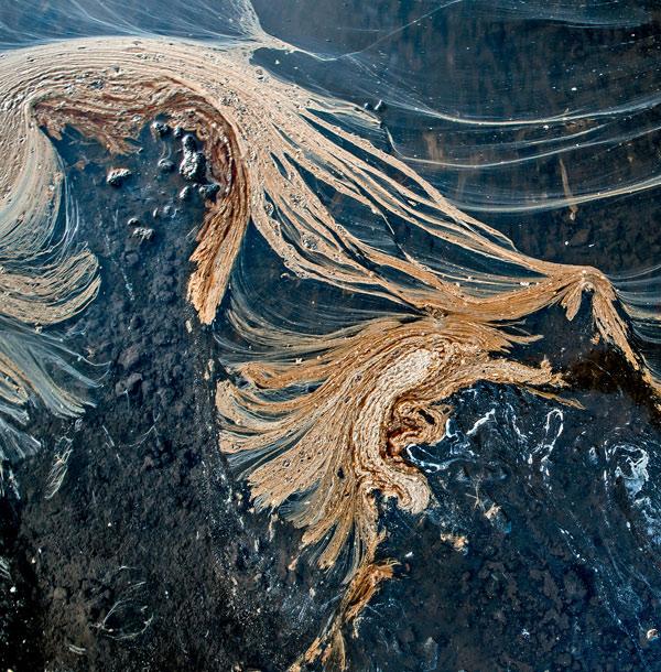 Фото №6 - День полярной уборки