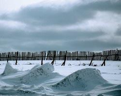 Фото №8 - Хождение за три моря