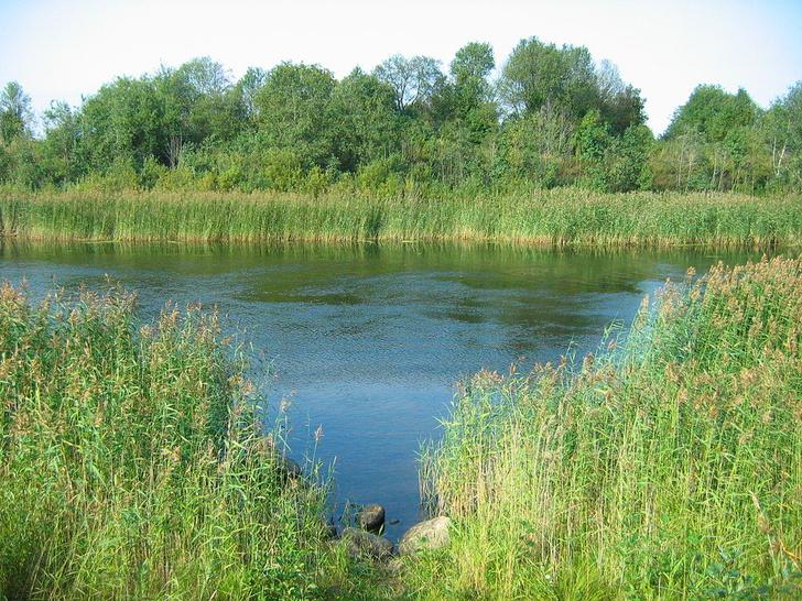 Фото №10 - Грандиозная затея Петра: 14 загадок Староладожского канала