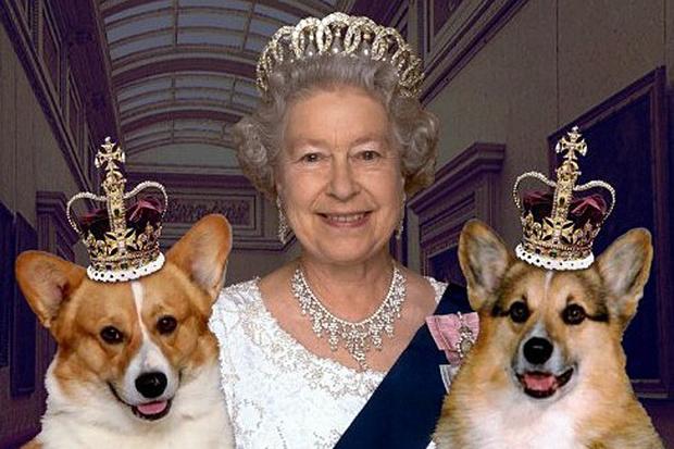 Фото №9 - 10 причин, почему королева Елизавета – самая крутая бабуля в мире