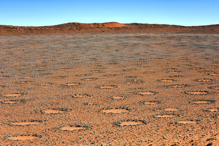 Фото №1 - Ученые объяснили природу загадочных кругов в пустынях Намибии