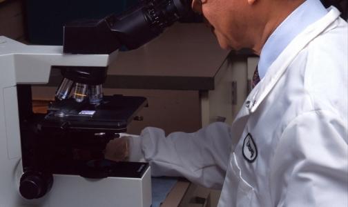 Фото №1 - В кабинетах врачей можно заразиться смертоносной бактерией