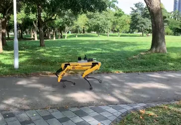 Фото №1 - «Робопёс» от Boston Dynamics начал патрулировать парк в Сингапуре, и это выглядит не так мило, как в рекламе (видео)