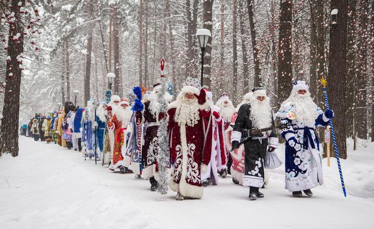 Фото №3 - В Кузбассе выбирают лучшего Деда Мороза