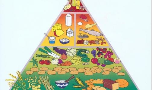 Фото №1 - Как правильно питаться, чтобы всегда быть в форме