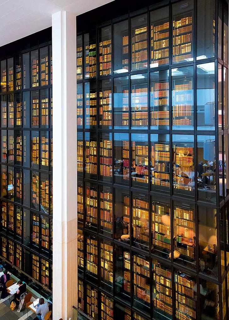 Фото №10 - Книжный мир: 12 потрясающих библиотек