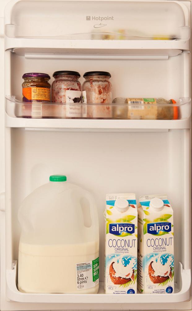 Фото №42 - Что лежит в холодильнике у жителей разных стран: 54 любознательных фото