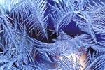 Фото №1 - Что рисует мороз на окнах?