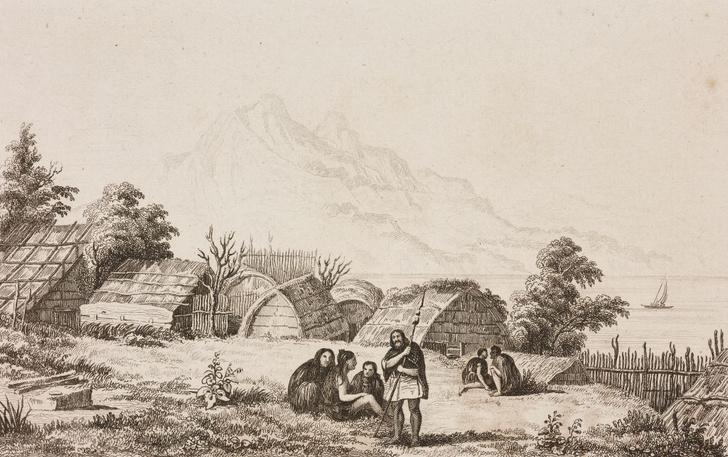 Фото №1 - В Новой Зеландии обнаружено древнее поселение маори