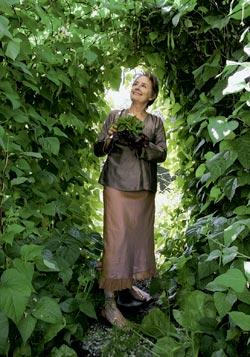 Фото №2 - Огородная революция Элис Уотерс