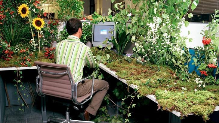 Фото №1 - Россияне рассказали о любимых видах офиса. И это совсем не open space
