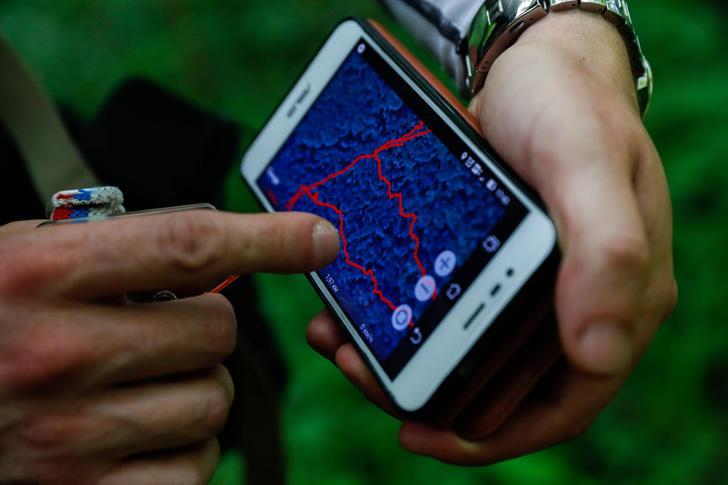 Фото №6 - Ориентация без навигатора: как вывести человека из лесной чащи по телефону?