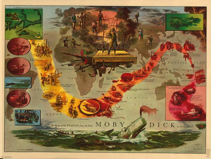 Фото №1 - Карта: за белым китом