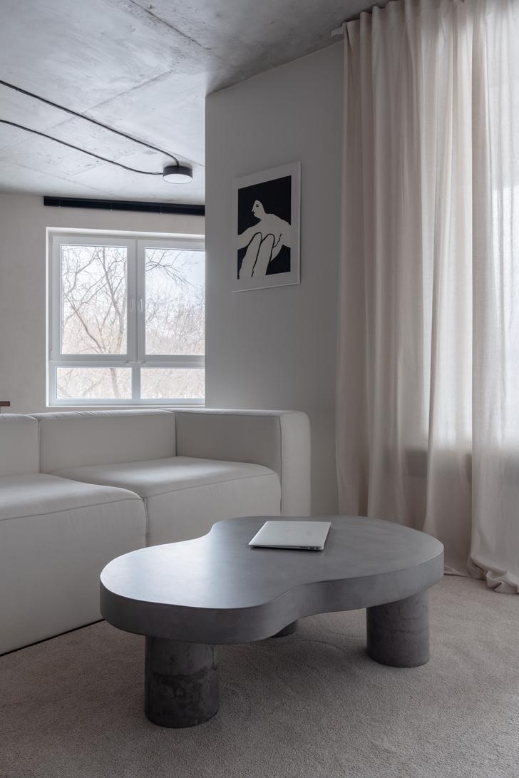 Фото №3 - Белая студия со спальней в алькове