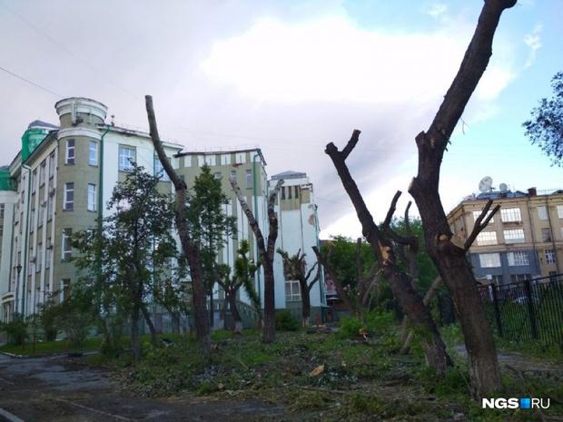 Фото №1 - В Новосибирске начали благоустраивать сквер «Водник»