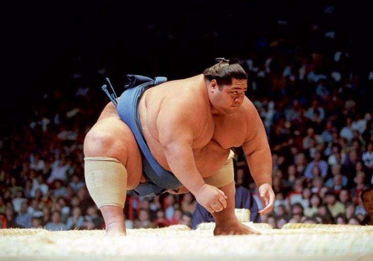 Фото №1 - Три антисовета от сумоистов для решивших похудеть
