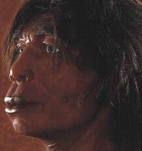 Фото №1 - Неандертальцев убила не климатическая катастрофа