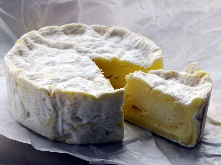 Фото №9 - Любовь вопреки: 8 самых пахучих сыров в мире