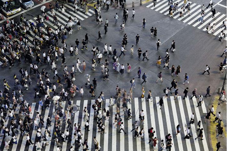 Фото №2 - Человек и общество: безвыходное положение