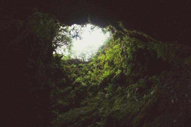 Фото №10 - Неизвестная Португалия: Азорские острова