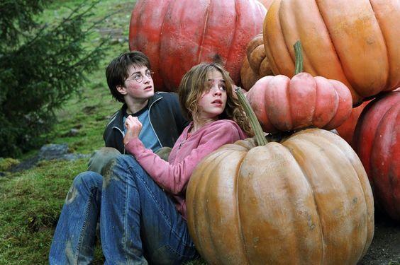 Фото №5 - С тыквой в обнимку: какие фильмы посмотреть накануне Хэллоуина