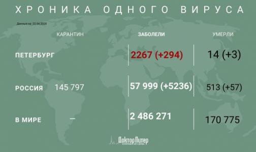 Фото №1 - За сутки у почти 300 петербуржцев выявили коронавирус, трое умерли