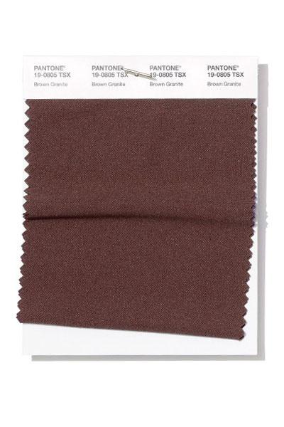 PANTONE 19-0805 Brown Granite