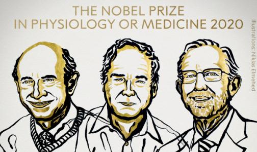 Фото №1 - Профессор СПбГУ - о Нобелевской премии за открытие гепатита С: Человечество теперь способно избавиться от этого вируса