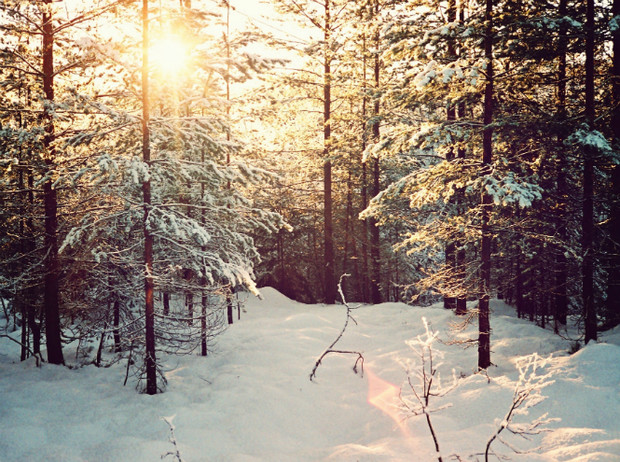 Фото №17 - Let it snow: самые снежные страны