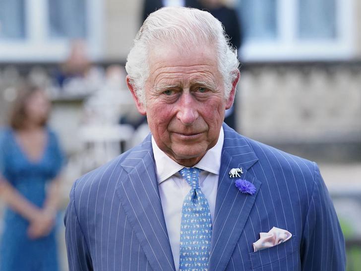 Фото №1 - Богатый принц: каким состоянием владеет Чарльз (и откуда оно взялось)