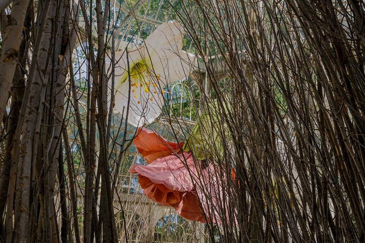 Фото №7 - Язык цветов: инсталляция в Хрустальном дворце в Мадриде