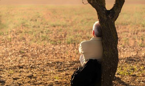 Фото №1 - Петербургский невролог: Как заметить предвестники болезни Альцгеймера, чтобы избежать Дня сурка