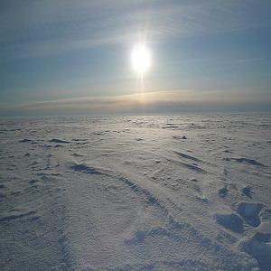 Фото №1 - Арктика ждет наших