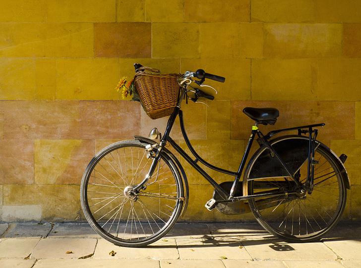 Фото №1 - 10 цитат великих людей о велосипедных прогулках