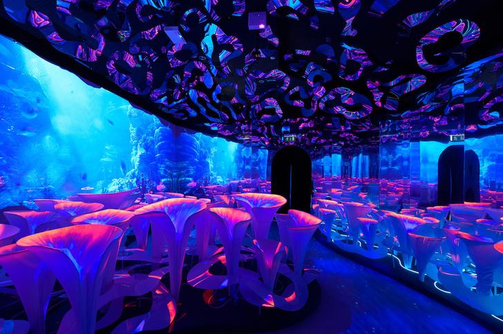 Фото №1 - «Океан юрского периода»: новая выставка о морских гигантах в «Москвариуме» на ВДНХ