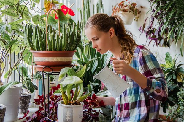 Фото №2 - Практическая магия: какие растения сажать для любви и богатства