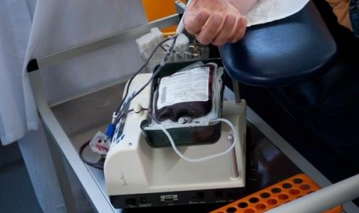Фото №1 - Минздрав хочет запретить людям с «невыраженными венами» сдавать кровь