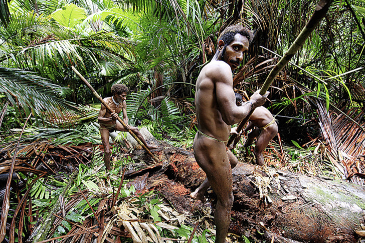 Фото №4 - Люди железного леса: как устроена жизнь в племени короваев